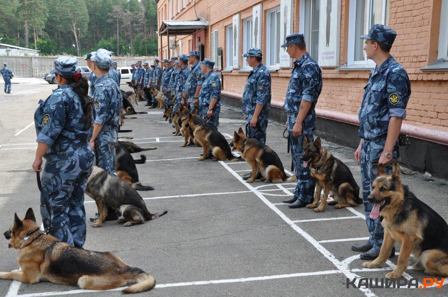 День кинологической службы в системе МВД России отмечается 21 июня