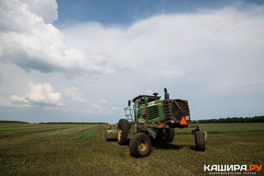Около 1,5 тыс. га каширских земель введены в сельхозоборот